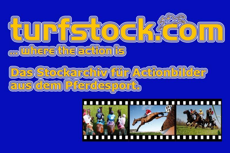 Werbebanner-turfstock-800x533_blue2