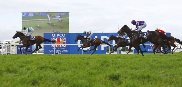 18.10.2014 - Ascot; Madame Chiang, ridden by Jim Crowley wins the Qipco British Champions Fillies and Mares Stakes (Group 1). Second place: Silk Sari, ridden by Andrea Atzeni (green cap). Third place: Chicquita, ridden by Joseph O'Brien (purple cap). Credit: Lajos-Eric Balogh/turfstock.com