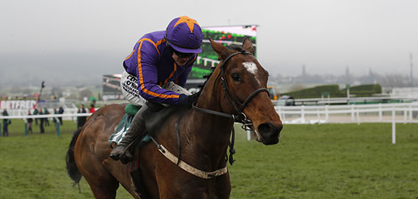 13.03.2015 - Cheltenham; Wicklow Brave ridden by Paul Townend wins the Vincent O´Brien County Handicap Hurdle Grade 3. Credit: Lajos-Eric Balogh/turfstock.com