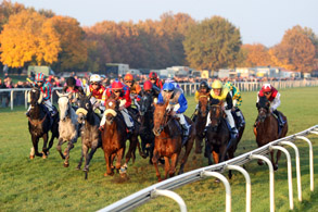 Pferde und Jockeys im Rennen. Galopprennbahn Hannover
