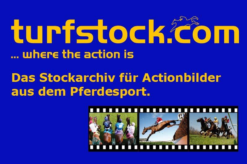 Werbebanner-turfstock-800x533_blue