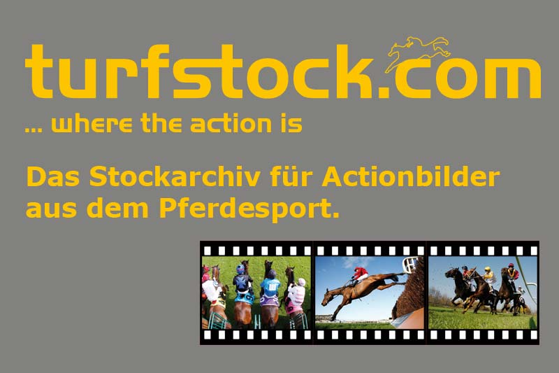 Werbebanner-turfstock-800x533_grey