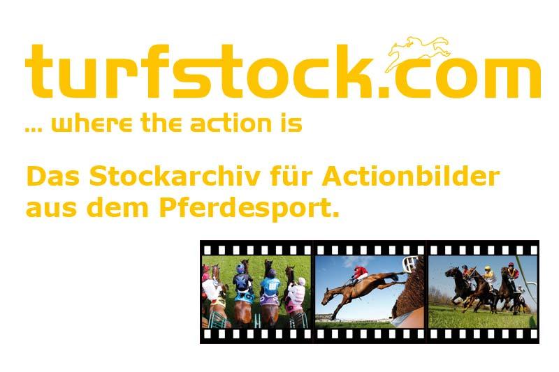 Werbebanner-turfstock-800x533_white