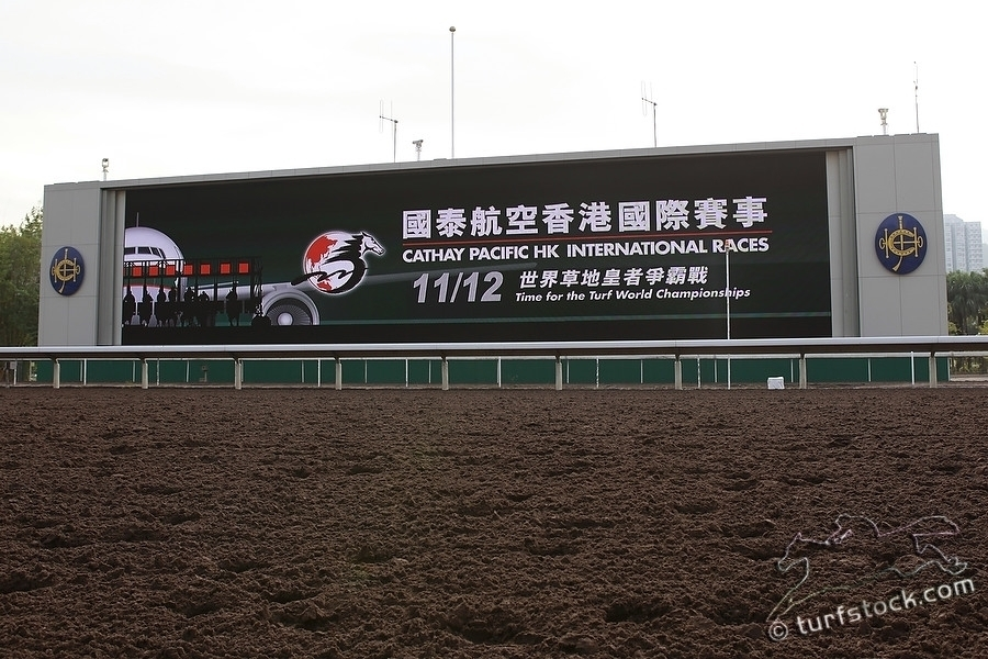 07. Dec. 2011 - Sha Tin Racecourse; Impressions: View at the odds-board at Sha Tin Racecourse. Credit: Lajos-Eric Balogh/turfstock.com