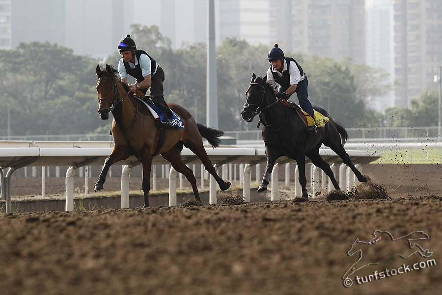 20111207hongkong_0028c