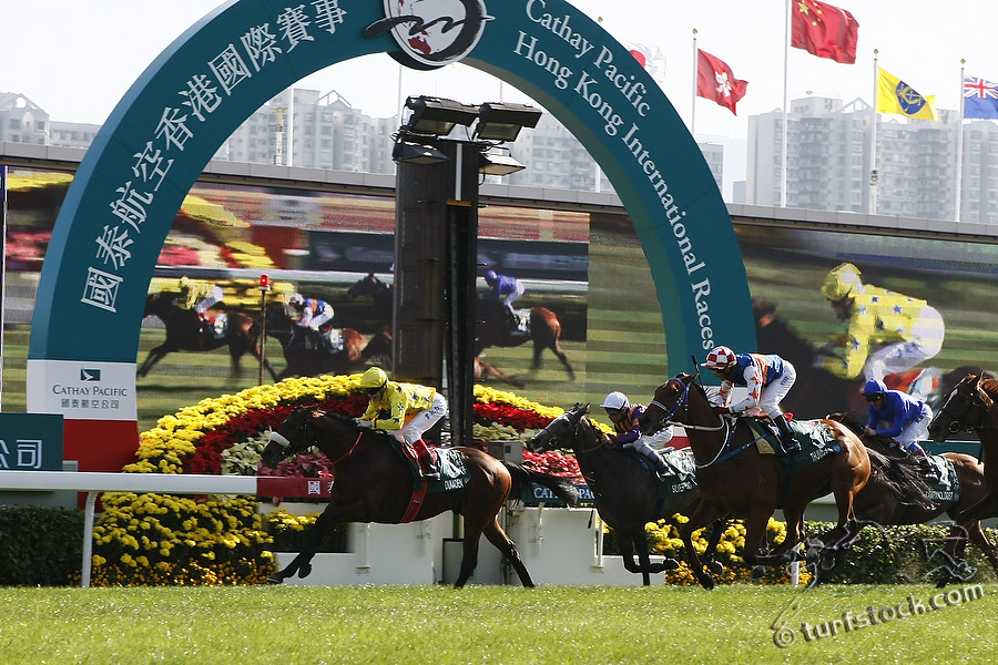 11. Dec. 2011 - Sha Tin Racecourse; Dunaden, ridden by Craig Williams (yello silks) wins the Cathay Pacific Hong Kong Vase - Group 1 (Turf). Second place: Thumbs Up, ridden by Brett Prebble (red white cap). Third place: Silver Pond, ridden by Thierry Jarnet (inside, white cap). Credit: Lajos-Eric Balogh/turfstock.com
