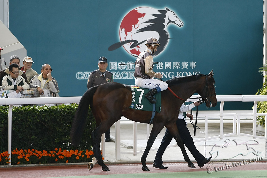 11. Dec. 2011 - Sha Tin Racecourse; Zazou, ridden by Olivier Peslier in the parade ring before the Cathay Pacific Hong Kong Cup - Group 1 (Turf). Credit: Lajos-Eric Balogh/turfstock.com