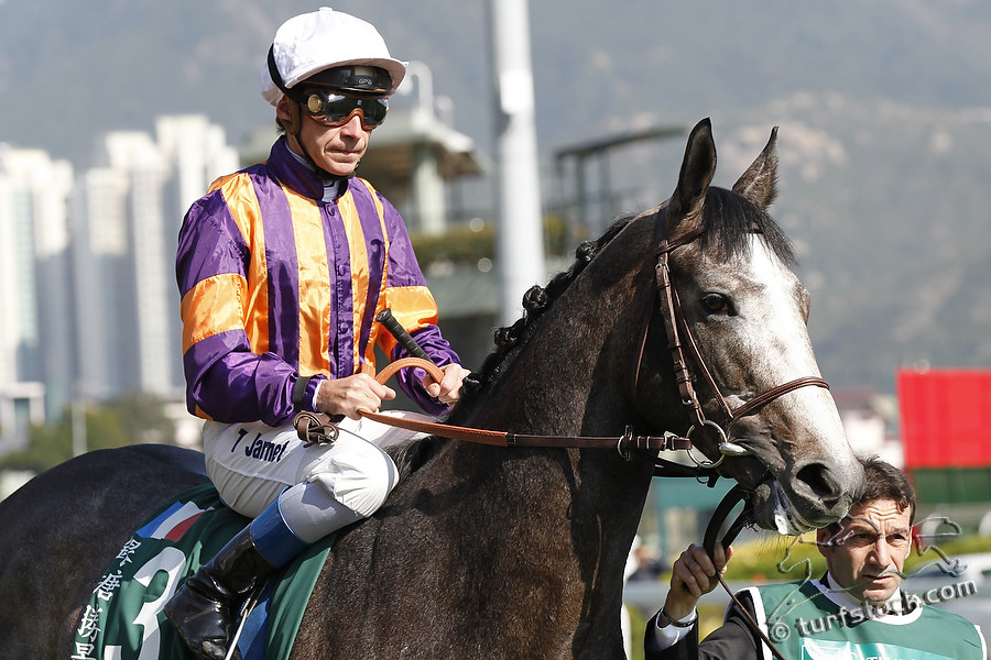 11. Dec. 2011 - Sha Tin Racecourse; Silver Pond, ridden by Thierry Jarnet during the parade for the Cathay Pacific Hong Kong Vase - Group 1 (Turf). Credit: Lajos-Eric Balogh/turfstock.com