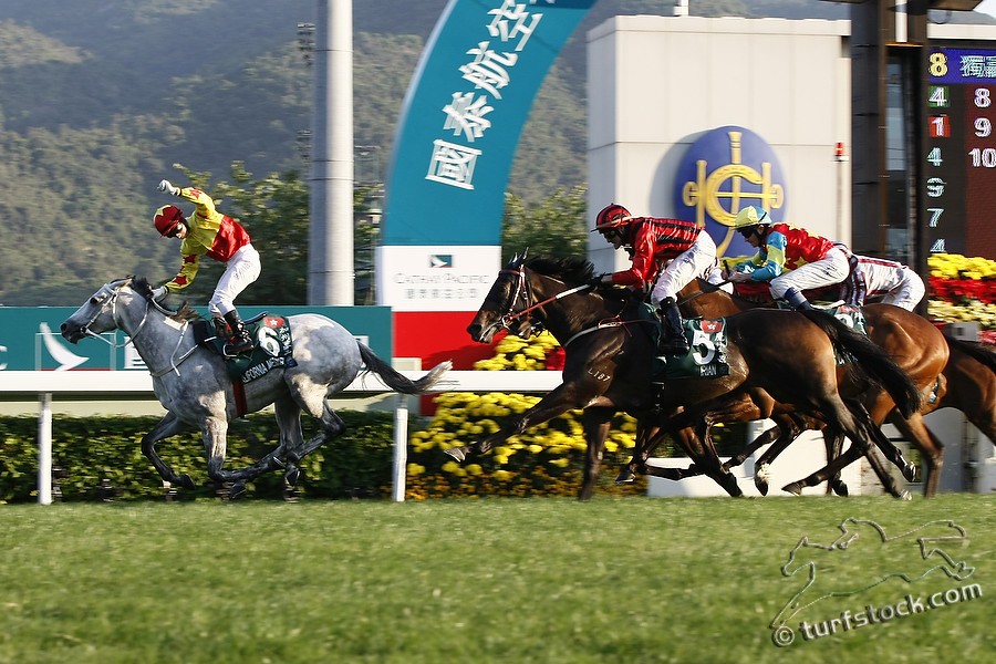 11. Dec. 2011 - Sha Tin Racecourse; California Memory, ridden by Matthew Chadwick wins the Cathay Pacific Hong Kong Cup - Group 1 (Turf). Second place: Irian, ridden by Darren Beadman (red cap). Third place: Zazou, ridden by Olivier Peslier (golden cap). Credit: Lajos-Eric Balogh/turfstock.com