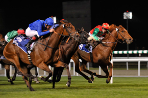 titurel_meydan2010