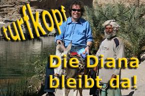 kolumne_hemke_diana