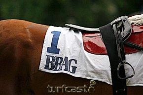 Symbolfoto BBAG © turfstock.com/Balogh