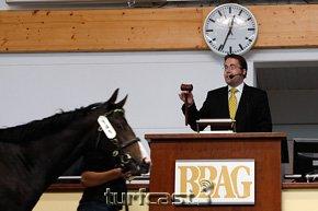 Symbolbild Auktionator © turfstock.com/Balogh