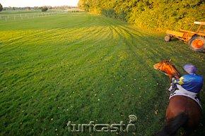 Symbolbild Start verpasst © turfstock.com/Balogh
