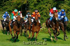 pferde_20080831bad-0336